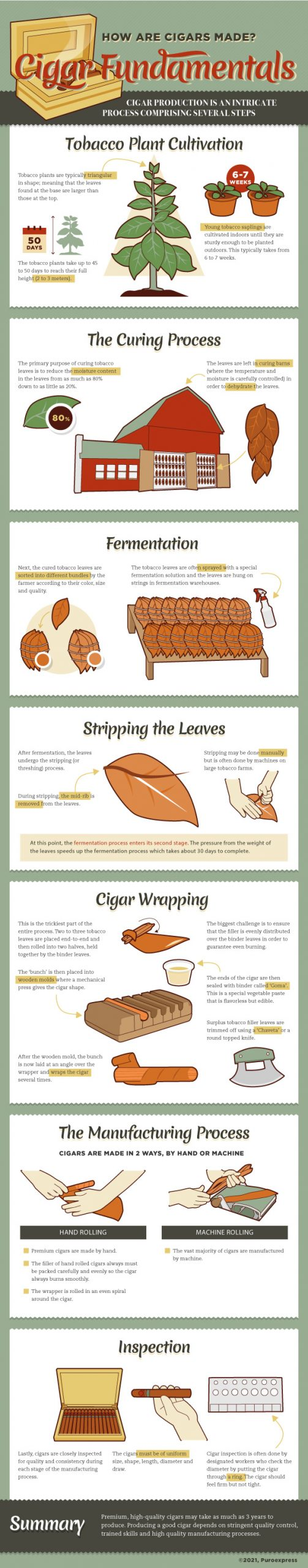 Cuban Cigar Fundaments Infographic