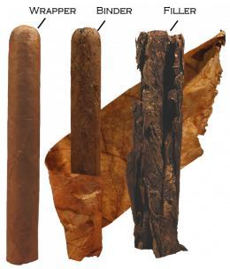 structure of a cigar